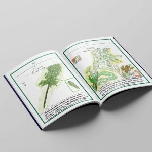 field guide mural arts program philadelphia urbal landscape philly book cover print layout catalogue curriculum shari hersh plants weeds nature reference